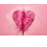 Heart, Feather