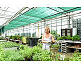 Greenhouse, Garden center, Gardener, Choosing