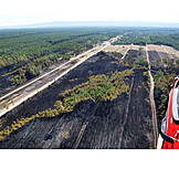 Environmental damage, Forest fire, Natural disaster