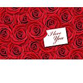 Valentine, Red Rose, I Love You