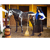 Horse, Cladding, Witch, Halloween