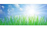 Sky, Meadow, Sunbeams, Sunny