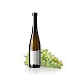 Weißwein, Riesling, Weinsorte