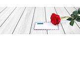 Rose, Envelope