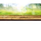 Sunlight, Spring, Wooden Table
