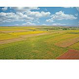 Agriculture, Farming, Farmland