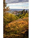 Autumn, Ruins, Schauenburg