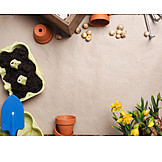 Spring, Gardening, Planting