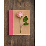 Rose, Diary