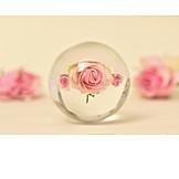 Rose, Crystal Ball