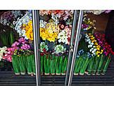 Flowers, Flower Shop