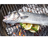 Fish, Broiling, Gilt Head Bream