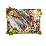 Seafood, Ingredient, Prepared Fish, Raw