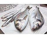 Package, Prepared Fish, Raw Fish