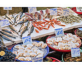 Fish, Mussels, Seafood