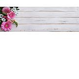 Copy space, Bouquet, Gerbera