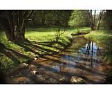 Stream, Summer, Tree Shadow