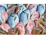 Fish, Gilt Head Bream