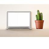 Laptop, Cactus