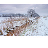 Stream, Winter, Snow