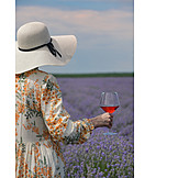 Nature, Summer, Red Wine, Excursion