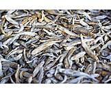 Fish, Dried Food