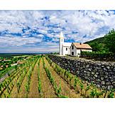 Agriculture, Wine Region