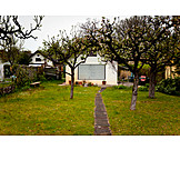 Garden, House