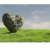 Heart, Stone Heart
