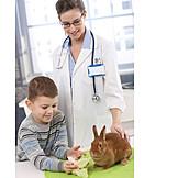 Child, Feeding, Rabbit, Veterinarian