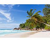 Beach, Praslin, Anse Georgette