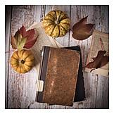 Autumn, Reading, Literature